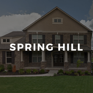 Spring Hill TN Real Estate